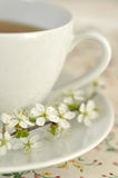 Spring Tea Time Stock Photo