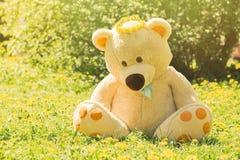 Spring teddy bear. Big teddy bear sitting under blowing trees Royalty Free Stock Photography