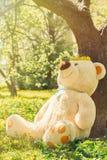 Spring teddy bear. Big teddy bear sitting under blowing trees Royalty Free Stock Image