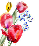 Spring template for card with Tulips flowers Stock Images