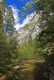 Spring on Tenaya Creek Stock Photography