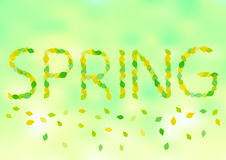 Spring text of leafs Royalty Free Stock Images