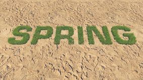 Spring text made from fresh grass among a barren land 1. Realistic 3D illustration of the fresh grass, forming the word Spring among the barren land. Was done Stock Photos