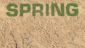 Spring text made from fresh grass among a barren land 4 Stock Photo