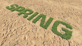 Spring text made from fresh grass among a barren land 2. Realistic 3D illustration of the fresh grass, forming the word Spring among the barren land. Was done Stock Images