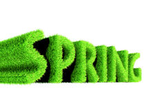 Spring text made of grass. 3d render Stock Illustration