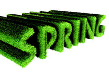 Spring text made of grass. 3d render Royalty Free Illustration