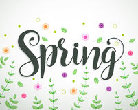 Spring text vector background design with colorful flowers Stock Photo