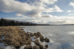 Spring Thaw. A Alaskan lake in the throws of the spring melt and the very start of the growing season Stock Images