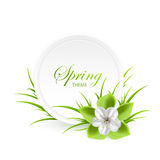 Spring theme Stock Image