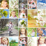 Spring theme Royalty Free Stock Images