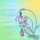 Spring Theme Card with Snowdrop. Spring Theme Greeting Card with Snowdrop Bush on the Background with Gradient and Brush Texture. Text with Words about Spring Royalty Free Stock Photos
