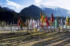 Spring in the Tibetan Plateau Stock Photos