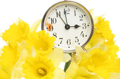Spring time. Old alarm clock surrounded by daffodil flowers stock images