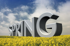 Spring time. The word spring in a field of flowering thyme Stock Images