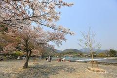 Spring time at Arashiyama, Japan. Sakura spring time at Arashiyama, Japan Stock Photo