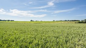 Spring time around Waldenburg. Idyllic sunny spring time scenery in Hohenlohe located in Southern Germany Stock Image