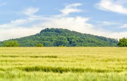Spring time around Waldenburg. Idyllic sunny spring time scenery in Hohenlohe located in Southern Germany Royalty Free Stock Photos