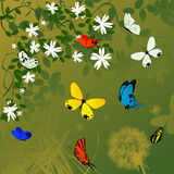 Spring time background. With flowers and butterflies Stock Photo