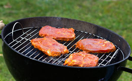 Spring Time,Barbecue in the Garden with  steaks Stock Image