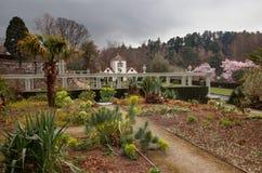 Spring time at Bodnant gardens Royalty Free Stock Photos
