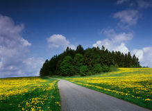 Spring time in Central Europe. Springtime in Central Europe - Bohemia Stock Photo