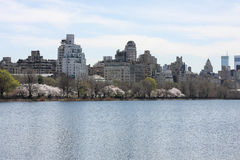 Spring Time in Central Park Stock Photos