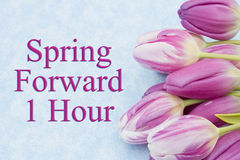 Spring Time Change. Some tulips with blue background and text Spring Forward 1 Hour royalty free stock photography