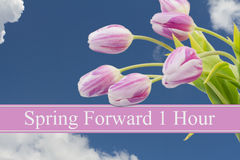Spring Time Change. Some tulips with blue sky and text Spring Forward 1 Hour stock photo