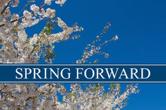 Spring Time Change. A tree in full bloom with blue sky and text Spring Forward Royalty Free Stock Photos