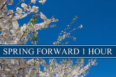 Spring Time Change. A tree in full bloom with blue sky and text Spring Forward 1 Hour Royalty Free Stock Photography