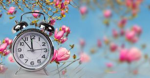 Spring time clock flowers nature space for your text , background stock image