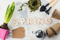 Springtime or gardening concept Royalty Free Stock Photography