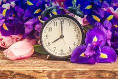 Spring time concept stock images
