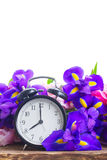 Spring time concept royalty free stock photo