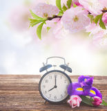 Spring time concept Royalty Free Stock Image