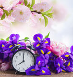 Spring time concept stock photography