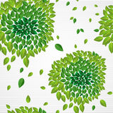 Spring time contemporary green leaves seamless pattern EPS10 fil Royalty Free Stock Photography