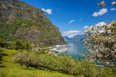 Spring time with cruise ship in fjord, Flam, Norway Royalty Free Stock Photo