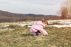 Spring time- cute little girl picking snowdrop flowers in spring. In natural Royalty Free Stock Photo