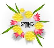 Spring time with dandelion and tulips Stock Image