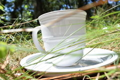 Spring time drink. Mug and plate in the grass Royalty Free Stock Image