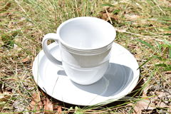 Spring time drink. Mug and plate sitting in the grass Royalty Free Stock Photos