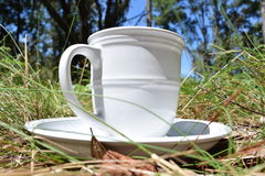 Spring time drink. Mug and plate sitting in the grass Royalty Free Stock Photo