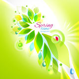 Spring time floral background Royalty Free Stock Image
