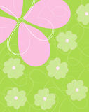 Spring time flower background Royalty Free Stock Images