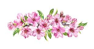 Spring time flowering composition. Peach, almond, plum, cherry, sakura flowers, pink apple blossom. Gentle watercolor stock illustration