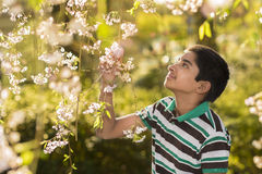 Spring Time stock image