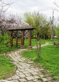 Spring time in Herastrau park Royalty Free Stock Photos