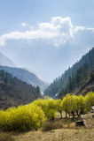 Spring time in Himalaya mountains, Nepal Stock Photo